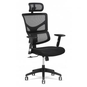X-Chair X-Basic DVL Task Chair